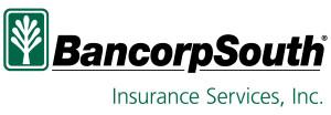 bxs-insurance-services_black_pms-342_hor2
